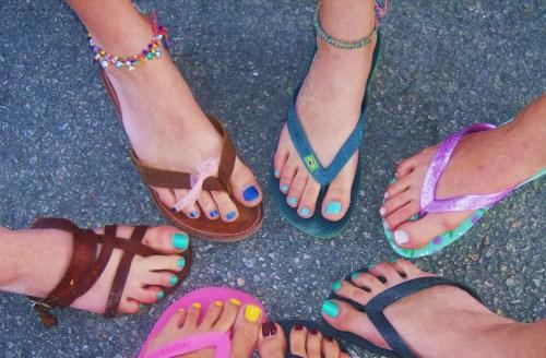 Summer Colours under the Hot Sun