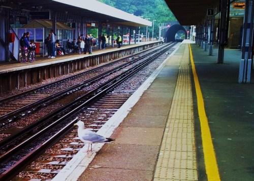 a regular train commuter