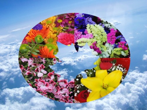 Heavenly May  Wreaths