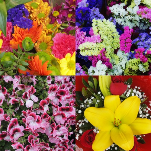 May Flowers and Wreaths