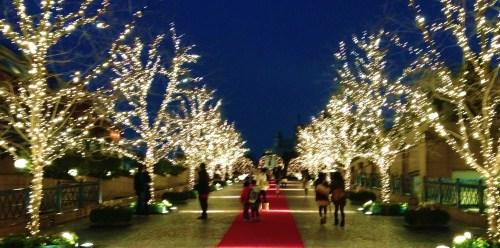 Gathering Christmas Stars ...