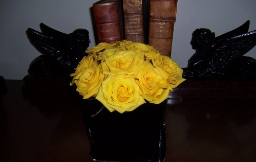 Yellow Roses attending the Symposium ...