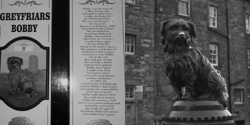 Greyfriars Bobby of Edinburgh ...