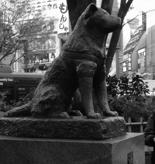 Hachiko is still waiting ...